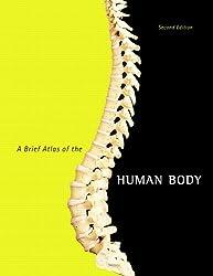 A Brief Atlas of the Human Body by Matt Hutchinson (2006-01-03)