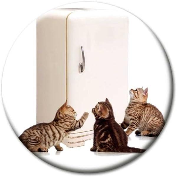 Kühlschrank Tafel Whiteboard Pinnwand Magnete Magnet Cartoon Katze
