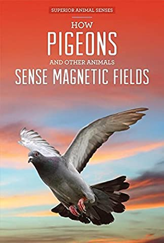 How Pigeons and Other Animals Sense Magnetic Fields (Superior Animal Senses) by Ryan Nagelhout (2015-08-19)