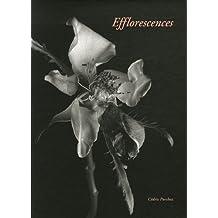 Efflorescences