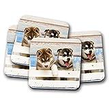 Set di 4 sottobicchieri con cuccioli di Husky siberiano, idea regalo, 15357