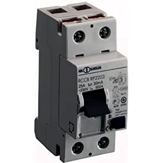 ABL Sursum Earth Leakage Circuit Breaker RP22032P 25A 0,03A Residual Current Switch 4011721100760