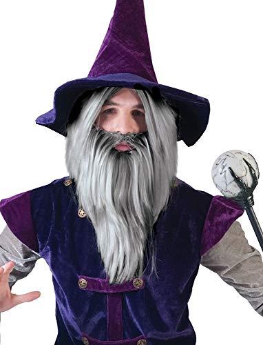 Zauberer Wizard Perücke mit Bart - Tolles Set für Herren