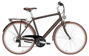 retro herren fahrrad 28 zoll pegasus avanti classico. Black Bedroom Furniture Sets. Home Design Ideas