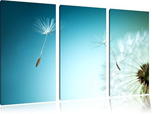 dandelion-scudo-aviatore-foto-pusteblume-3-pezzi-di-tela-120x80-immagine-sulla-tela-xxl-enormi-immag