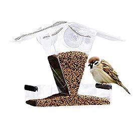 farmer-W Mangiatoia per Uccelli Automatica in Acrilico – Alimentatore Automatico per Uccelli Alimentato con Contenitore di mangime Automatico Integrato