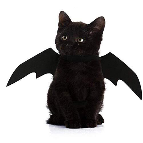 WENXX Halloween-Haustierkatzen- Und -Hundekleidung, Kühler Schwarzer Schläger Kleiden Oben An.