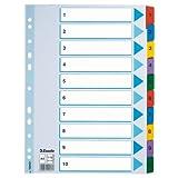 Esselte Kartonregister (1-10, A4, Karton, 10 Blatt) weiss