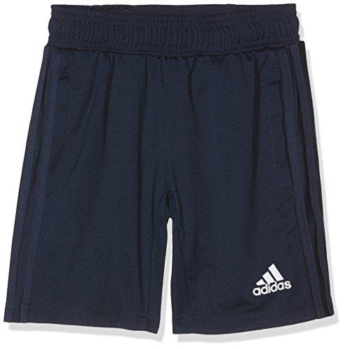 adidas Jungen Tiro 17 Trainingsshorts, Collegiate Navy/White, 140