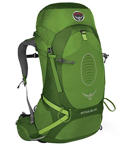 Osprey Herren Atmos Ag 50 Backpack, Absinthe Green, 80 x 35 x 40 cm, 50 Liter