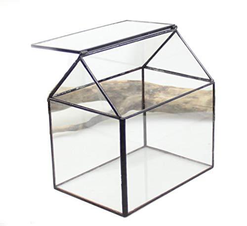 DingSheng House Form Glas Geometrische Seite offen für Sukkulenten Kakteen Fern Moos Miniatur