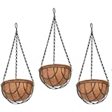 COIR GARDEN Coco Flower POTS Hanging Basket for Gardening (8 Inch) -3 Pieces