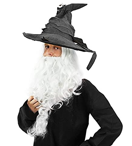 MYSTICAL WIZARD GREY POINTED WIZARD HAT + LARGE WHITE BEARD & WIG POWERFUL SORCERER FANCY DRESS COSTUME ACCESSORY BOOK WEEK CHARACTER
