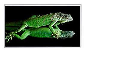19 Bildheizung im Shop Infrarot Heizung 600 Watt Chameleon Fern Infrarotheizung - 5 Jahre Herstellergarantie- Elektroheizung mit Überhitzungsschutz - Infrarotheizung Heizt bis 18m² Raum - mitgeliefert wird ein Zertifikat durch deutsche Ingenieurgesellscha