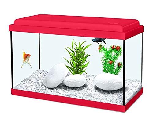 Acquario nanolife kidz 30 rosso zolux