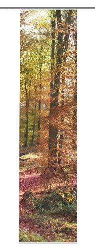 """Home fashion 86035-711 Schiebevorhang Digitaldruck """"Waldorf"""", natur / 245 x 60 cm Dekostoff-Seidenoptik"""