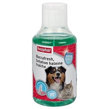 Beaphar - Buccafresh, solution haleine fraîche - hygiène bucco-dentaire - chien et chat - 250 ml