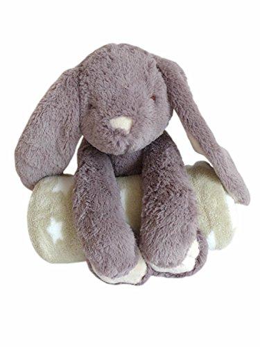 Niedlicher Plüschhase mit kuschelweicher Fleecedecke Hase Decke Stofftier