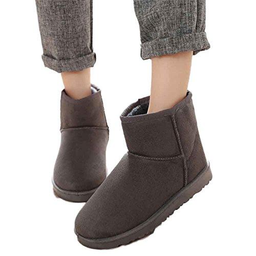 Scarpe da donna,Xinantime Moda Stivali Caviglia Piatto Inverno caldo Scarpe da neve Allacciare Scarpe (grigio, 36)