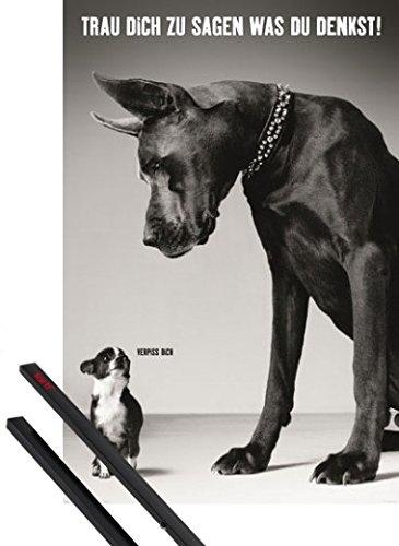 Foto de 1art1® Póster + Soporte: Perros Póster (91x61 cm) Chihuahua Y Gran Danés, Vete A La Mierda Y 1 Lote de 2 Varillas Negras