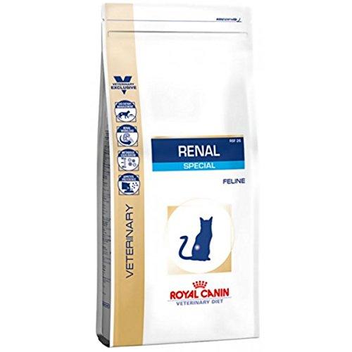 ROYAL CANIN Renal Special Katze Trockenfutter - Bei chronischer Niereninsuffizienz - Renal Canin Royal Beef