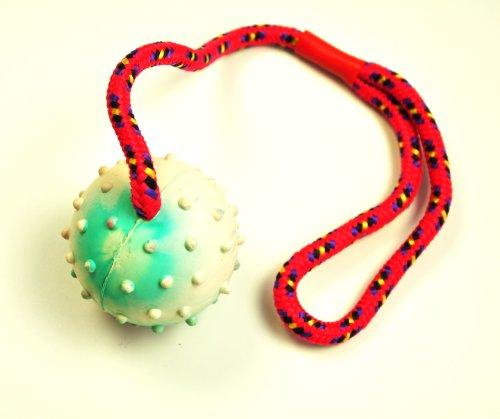 5 x nanook Schleuderball im Set - ideale Wurfschleuder für Hunde- perfektes Ausdauertraining und großer Hundespielspaß