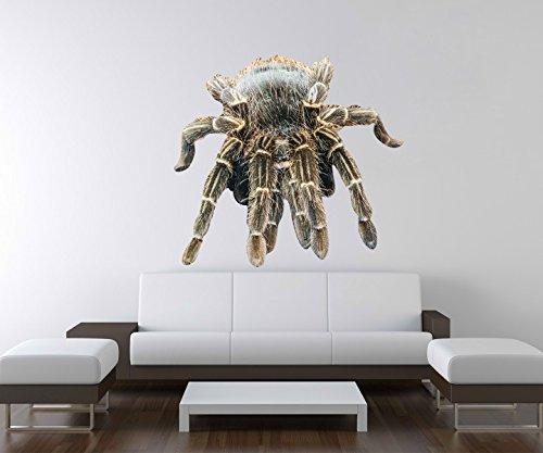 3D Wandtattoo Spinne Tarantel Tier Netz giftig Wand Aufkleber Deko Wandbild Wandsticker A3D70, Motiv Breite:120cm