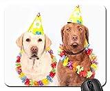 Mauspads - Hunde-Karnevals-Spaß-Haustier Ernst Labrador