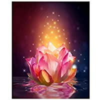 ttymei Diy Oil Painting By Numbers Lotus Flower Diy Painting By Numbers Acrylic Paint On Canvas Modern Wall Art Picture Painting Paint By Number Kits 40x50cm with frame