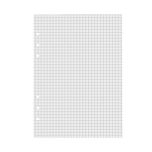 VEESUN A5 6 Löcher Refill Kariert Papier, 6-Ring Binder 120 Blatt / 240 Seiten für A5 Nachfüllbar Tagebuch Notizbuch Journal