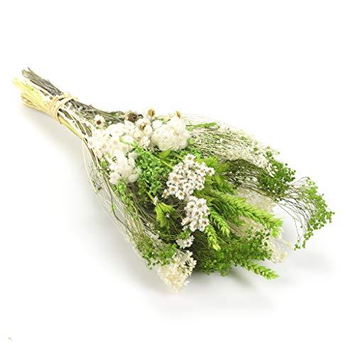 Bouquet-verticale-sanremo fiori essiccati dalla riviera dei fiori - realizzato a mano (colore verde)