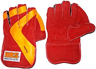 HRS Practice Wicket Keeping Gloves (Youth, Multicolour)