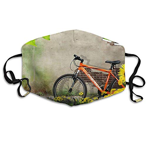 HUSDFS Mouth Masks Sunflowers Bike Background Unisex Facemask Ear-loop Dust Facemask Cycling Breathable Mask -