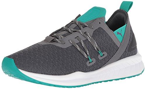 Preisvergleich Produktbild PUMA Men's Ignite Ronin Sneaker,  Iron gate-Spectra Green-Phlox