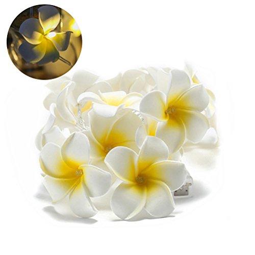 Ledmomo catena di luci led a forma di fiori da 3 metri, alimentata a batteria, ideale per giardino, camera da letto, feste di matrimonio, san valentino, con luce di colore bianco caldo