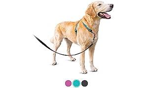 Petsafe - Arnés para Perros 3 en 1, con cinturón para Coche, antitirones, cómodo, reflectores, Agarre para el arnés, Tallas XS, S, M, L, Color Negro, Azul, Morado
