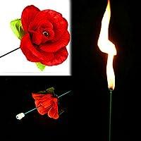 Gogogo-Zaubertrick-Feuer-zur-Rose-Blume-fr-Bhnen-Property-Schauspiel-Show-Party-Liebhaber-Geschenk Gogogo Zaubertrick Feuer zur Rose Blume für Bühnen Property Schauspiel Show Party Liebhaber Geschenk -