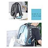 Panorama Transparent Pet Bag Space Bag Katze Tasche Tragbare Kabine Umhängetasche Rucksack Hund Katze aus Tasche -M (33 * 27 * 42 CM)