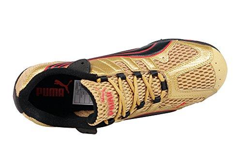 Puma , Sneaker Uomo Or (Gold/Black/Red)