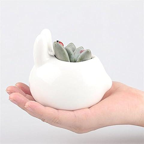 Kawaii coniglio bianco di ceramica Vaso-Vaso per piante succulente, Mini