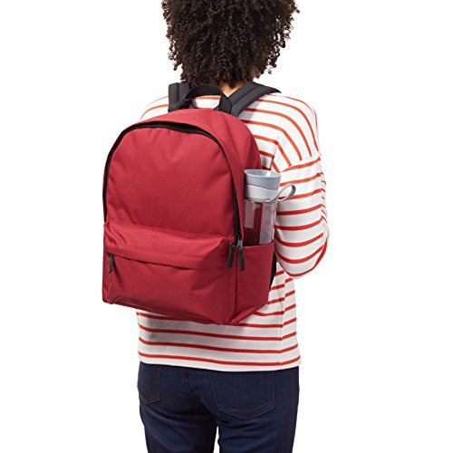 Best supreme backpack in India 2020 AmazonBasics 21 Ltrs Classic Backpack - Red Image 8