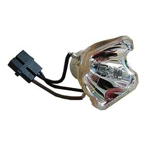 NEC VT85LP - Lampe seule CODALUX - NEC VT480, VT490, VT491, VT495, VT580, VT590, VT590G, VT595, VT680, VT695, VT695G