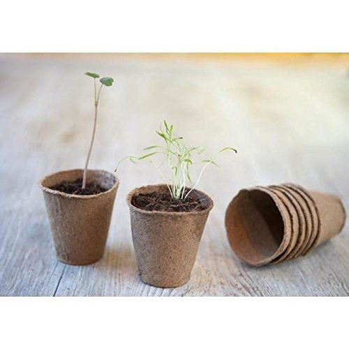 Lot de 96 pots en tourbe ronds H6 x diam 6 cm - 24 x 4