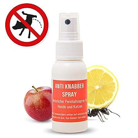 4yourpet Anti Knabber und Erziehungsspray für Hunde und Katzen, Welpentraining, für Innen und Außen, neutralisiert Urin…