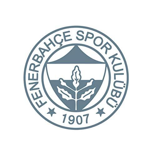 Preisvergleich Produktbild FENERBAHCE ISTANBUL FENER TÜRKIYE Auto Car Sticker Aufkleber FB Kadiköy (XS = 9 x 9 cm,  Grau)