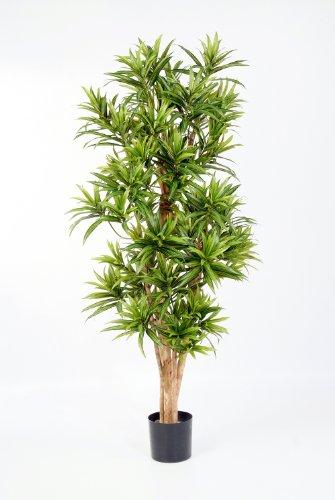 artplants – Deko Dracaena Reflexa Pflanze YASU, 1270 Blätter, grün, schwer entflammbar, 150 cm – Kunst Zimmerbaum/Künstlicher Drachenbaum