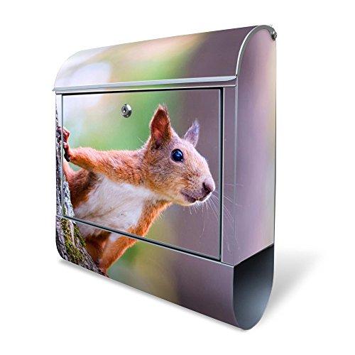 Banjado Design Briefkasten mit Motiv Eichhörnchen | Stahl pulverbeschichtet mit Zeitungsrolle | Größe 39x47x14cm, 2 Schlüssel, A4 Einwurf, inkl. Montagematerial