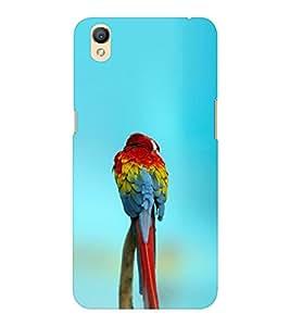 EPICCASE spectacular parrot Mobile Back Case Cover For OPPO A37 (Designer Case)