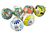 Möbelknopf Möbelknauf Möbelgriff Set Nr.47 6er bunt Keramik Porzellan handbemalte bunte Vintage Möbelknöpfe für Schrank, Schublade, Kommode, Tür - Jay Knopf