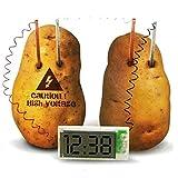 Haoli Kreative Uhr Bio-Sensing Obst und Gemüse Grün Mode Digitaluhr Kartoffel Power Clock Wecker Set von 3